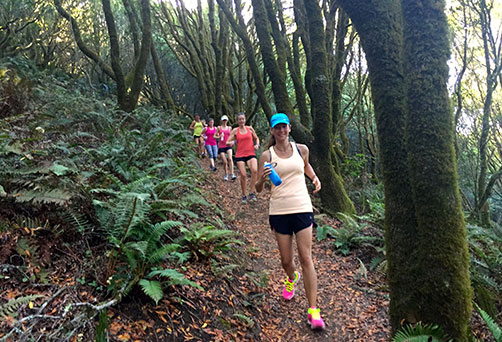 Private Running Coaching in Sonoma California.