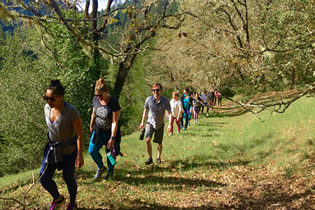 Harvest weekend meditation, nourishing food, hiking in nature