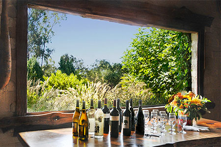 Yoga Retreat with Hiking and Wine Tasting in Sonoma Wine Country
