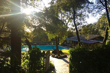 Yoga Retreat with Hiking and Wine Tasting in Sonoma